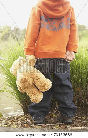 Rear view of young boy with teddy bear