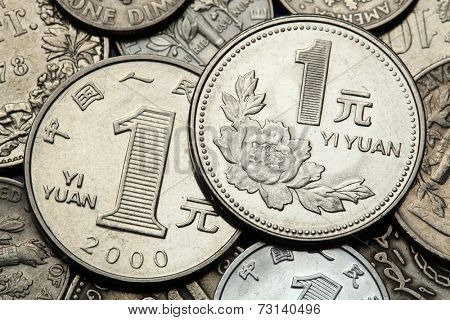 Coins of China. Peony flower depicted in the Chinese one Yuan coin.