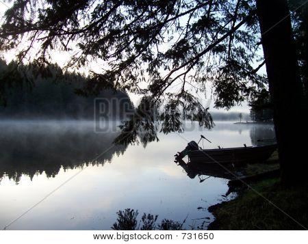 Morning Fog In Oregon