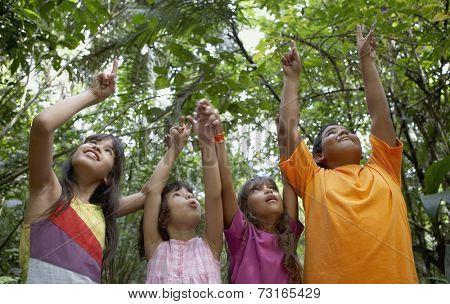 Hispanic children pointing up in woods