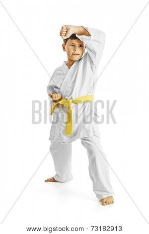 A karate kid posing, isolated on white