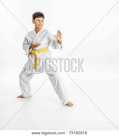 Full length portrait of a karate child exercise on white background