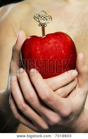 HANDS APPLE