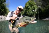 image of fly rod  - Fly fisherman holding fario trout recently caught - JPG