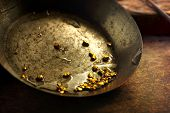 stock photo of gold panning  - Finding gold - JPG