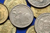 stock photo of serbia  - Coins of Serbia - JPG