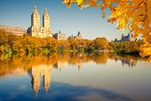pic of fall day  - Central park at sunny day - JPG