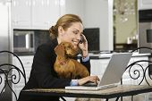 stock photo of telecommuting  - Hispanic businesswoman talking on cell phone - JPG