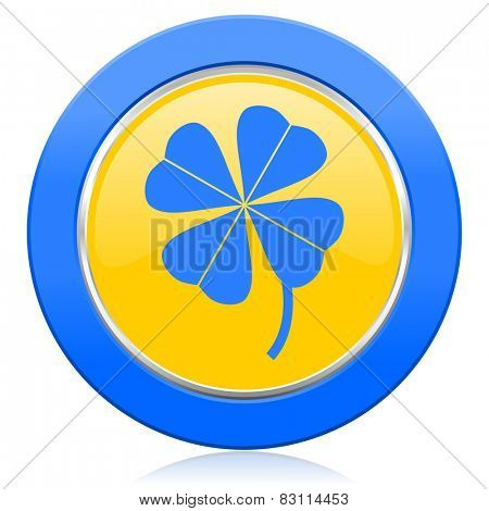 four-leaf clover blue yellow icon