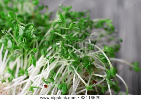 Fresh cress salad on napkin and blurred wooden planks background