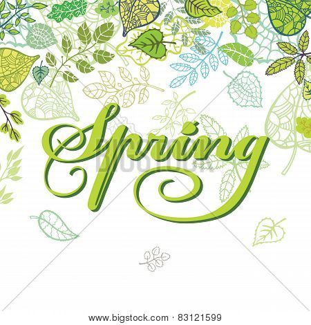 Spring composition with green Leaves,branches