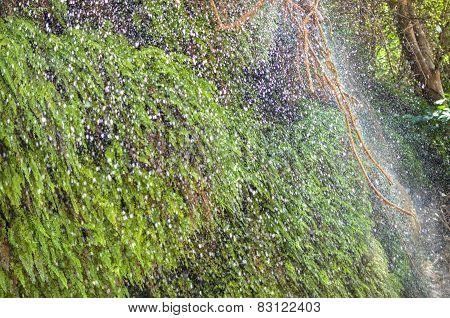 Waterfall Rain