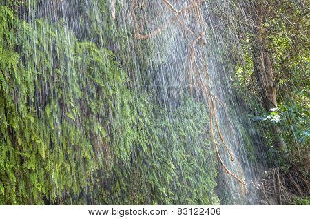 Closeup Tropical Waterfall