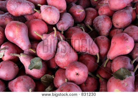 Crimson Pears Hood river