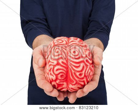 Human Rubber Brain Between The Hands