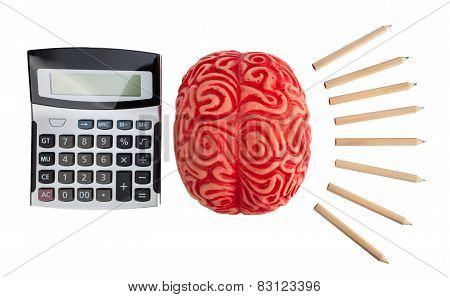 Concept Of Brain Hemispheres Between Logic And Creativity.