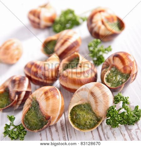 french gastronomie,escargot