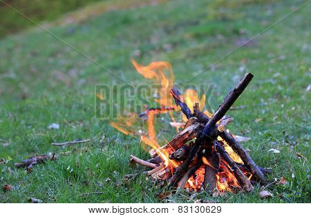 Small campfire on green meadow