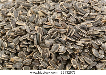 Sunflower Seed Background
