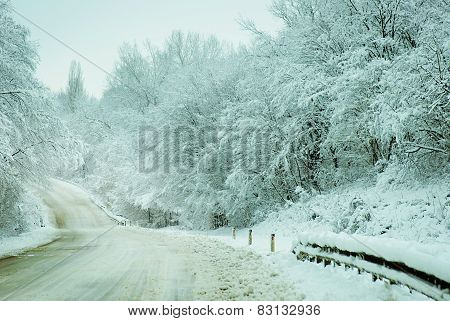Country Road Woods With Snow In Russia.