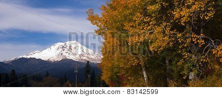 Mt Shasta Rural Fall Color California Nature Outdoor