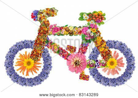 Bicycle From Flowers