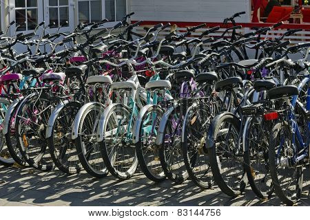 Lease Of Bicycles In City Park