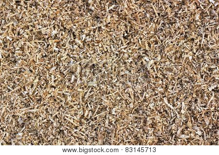 Yellow Pine Sawdust