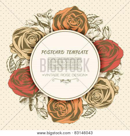 Vintage rose background. Vector greeting card
