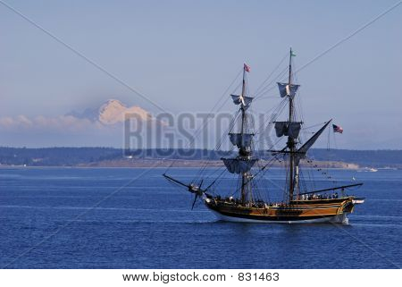 lady washington with mount baker background