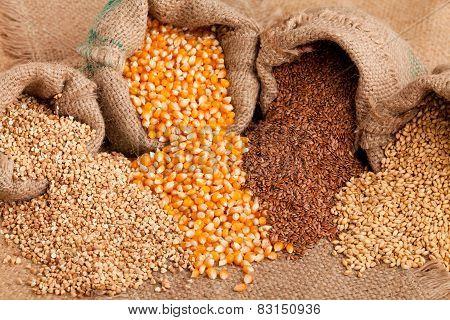 Organic Seeds:  Buckwheat, Corn Flax And Wheat In Jute Sack