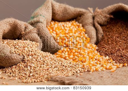 Organik Food:  Buckwheat, Corn And Flax In Jute Sack