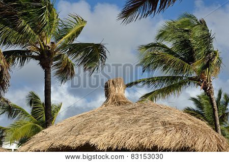Caribbean thatched roof and palm trees