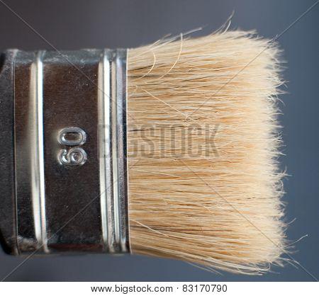 Closeup Of Old Flat Paint Brush