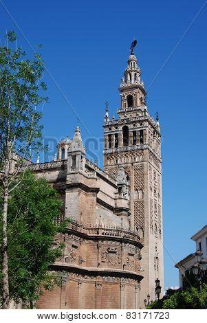 Giralda tower, Seville.