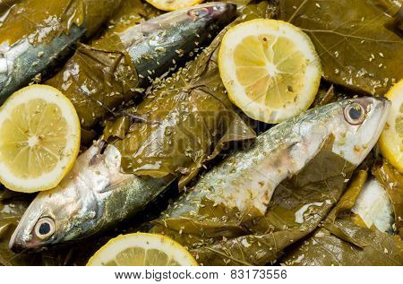 Mackerel ready for baking in vine leaves, with olive oil, lemon and oregano, a traditional Greek dish with small mackerel or sardines