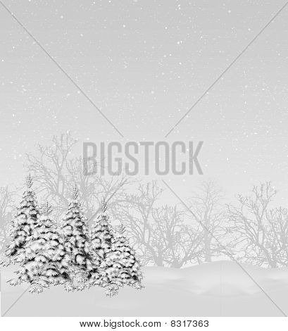 Snowy Trees Monotone
