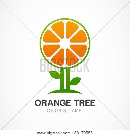 Vector Logo Design Template. Orange Tree Illustration. Garden, Organic Or Ecology Icon.