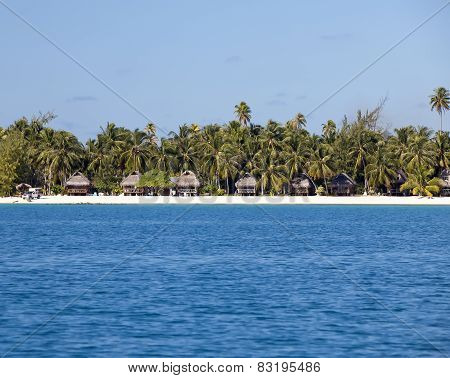 Typical Polynesian landscape - seacoast with palm trees and small houses