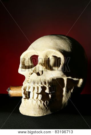 Smoking human scull with cigar in his mouth on dark color background