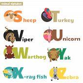 image of letter x  - Animal alphabet S T U V W X Y Z - JPG