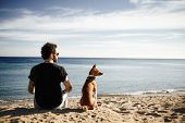 stock photo of blue animal  - Caucasian man in sunglasses sitting in beach with friend