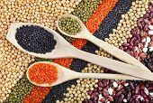 pic of legume  - lentils - JPG