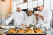 image of team building  - Team of bakers working at counter in the kitchen of the bakery - JPG