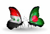 picture of bangladesh  - Two butterflies with flags on wings as symbol of relations Syria and Bangladesh - JPG