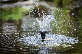stock photo of fountain grass  - Small fountain in the pond in the garden - JPG