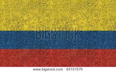 Colombia flag texture on green grass in the garden for background