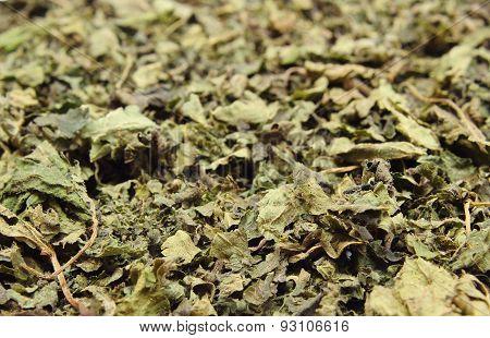Heap Of Dried Nettle