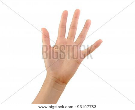 Girl hand showing five fingers isolated on a white background. Number 5