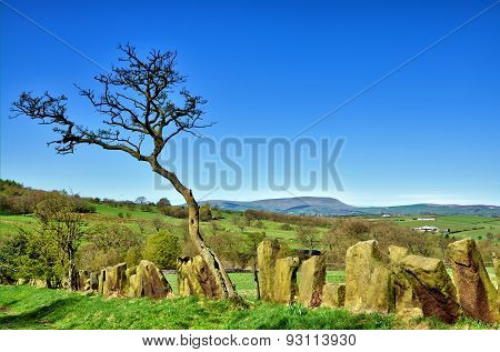 Stone built boundary fence near Pendle Hill